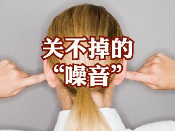 """2017年10月13日 十月刊——《关不掉的""""噪音""""》"""