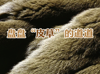 """2019年3月1日 三月刊——《盘盘""""皮草""""的道道》"""